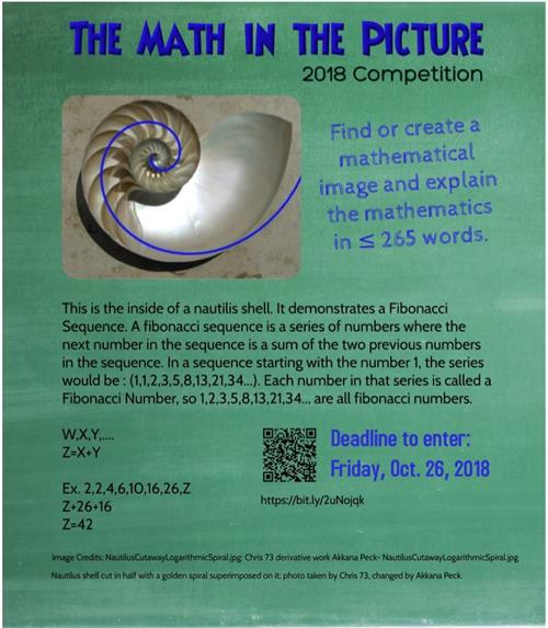 Texas State Math In Pictures Competition