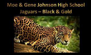 picture of jaguar with words stating that jaguar is chosen as mascot and school colors are black and gold
